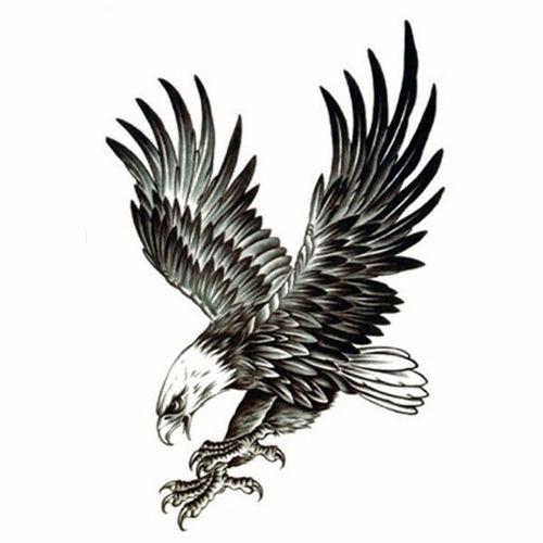 tatouage éphémère aigle