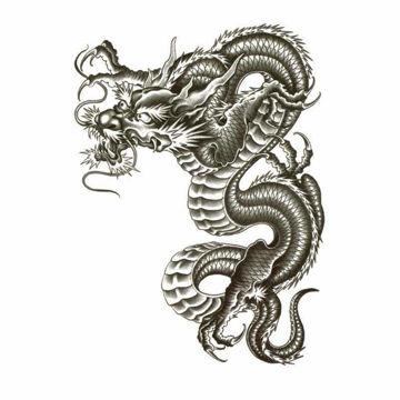 Tatouage Ephémère Grand Dragon